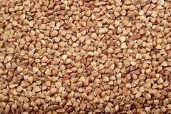 Buckwheat seeds Stock Images