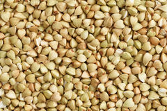 Buckwheat seeds Royalty Free Stock Images