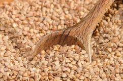 Buckwheat seeds Stock Photos