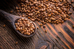 Buckwheat seeds in spoon Stock Images