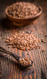 Buckwheat seeds in spoon Royalty Free Stock Images