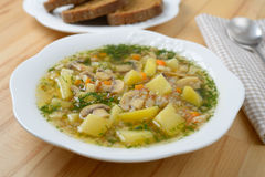 Buckwheat soup with mushrooms Stock Photography