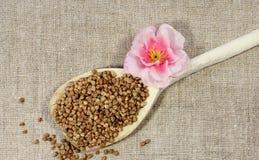 Buckwheat in a spoon Stock Image
