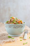 Buckwheat, stewed with meat, carrots and onions on a light background Royalty Free Stock Photos