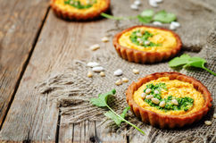 Buckwheat tartlets with with white beans carrot hummus and cilan Royalty Free Stock Photo