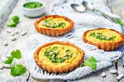 Buckwheat tartlets with with white beans carrot hummus and cilan Stock Images