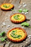 Buckwheat tartlets with with white beans carrot hummus and cilan Royalty Free Stock Photography