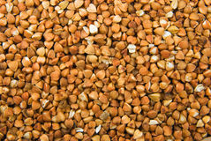 Buckwheat texture. Buckwheat seeds texture, very close Royalty Free Stock Photo