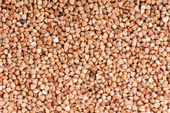 Buckwheat texture. Abstract background texture Stock Photography