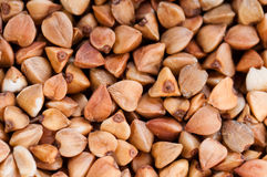 Buckwheat texture. Food abstract. background Royalty Free Stock Images