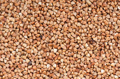 Buckwheat texture. Abstract background food Stock Image