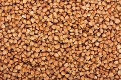 Buckwheat texture Stock Photos