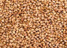 Buckwheat texture Stock Photos
