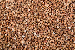 Buckwheat. A texture background is out of boiled buckwheat Royalty Free Stock Photo
