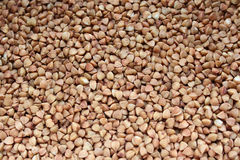 Buckwheat texture. Brown background. free-flowing. raw buckwheat Stock Photography