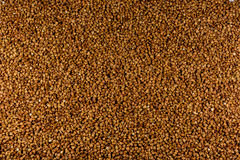 Buckwheat. Texture of buckwheat, healthy food royalty free stock image