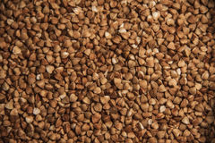 Buckwheat texture Stock Images