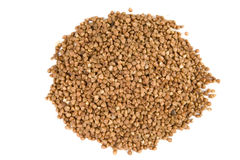 Buckwheat on white ground Royalty Free Stock Photos