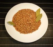 Buckwheat in a white plate on a dark background Royalty Free Stock Image