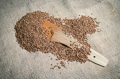 Buckwheat with wooden paddle lying on canvas Stock Photography