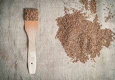 Buckwheat with wooden paddle lying on canvas Royalty Free Stock Photo