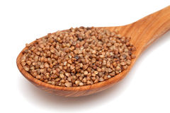 Buckwheat in a wooden spoon Stock Images