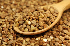 Buckwheat in wooden spoon Stock Images