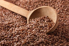 Buckwheat with wooden spoon. Royalty Free Stock Images