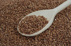 Buckwheat and wooden spoon Royalty Free Stock Photography