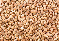 Buckwheats texture Royalty Free Stock Photo