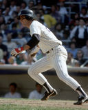 Bucky Dent Royalty Free Stock Images
