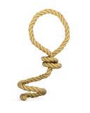 Bucle de la cuerda Foto de archivo libre de regalías
