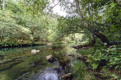 Bucolic image of the river Eume with the banks covered with tree. S and with some rocks in the channel, in Galicia, Spain. A very green landscape without people royalty free stock photography
