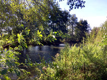 Bucolic river Stock Photography