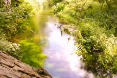 Pastoral river scene. The bucolic surroundings of the river Nar in the pastoral setting of the Nar valley in mid summer stock photos