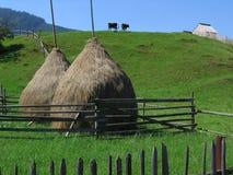 Bucovina dream series. A beautiful symmetric landscape Royalty Free Stock Photography