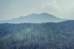 Bucovina mountains landscpae Stock Images