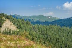 Bucovina mountains landscpae Royalty Free Stock Photo