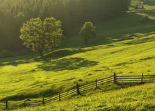 Bucovina scenery. Dreamy Romanian landscape, in early morning, right after sunrise.Taken in the beautiful traditional region of Bucovina Royalty Free Stock Image
