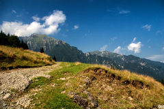 Bucsoiu mountain Stock Photos