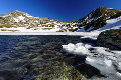 Bucura Lake in National Park Retezat Royalty Free Stock Photography