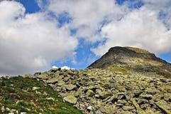 Bucura Peak. Retezat Mountains,Romania stock images
