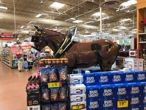 Bud Light Light Beer Display. Bud Light Light Beer Display with the horse in a supermarket Stock Photos