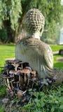 Buda сидя на toadstools Стоковые Изображения