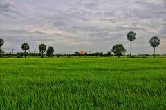 Buda Foto de archivo libre de regalías