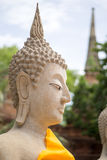Buda antiga em Ayutthaya, Tailândia Fotografia de Stock Royalty Free