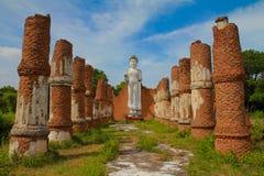 Buda branca Fotografia de Stock