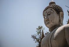 Buda branca fotos de stock royalty free