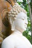 Buda, cara de la estatua del budda Fotografía de archivo libre de regalías