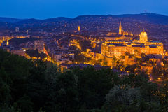 Buda Castle in the blue hours Royalty Free Stock Photo